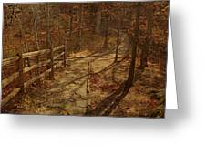 Walkway Through The Forest Greeting Card