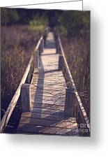 Walkway Through The Reeds Appalachian Trail Greeting Card