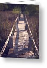 Walkway Through The Reeds Appalachian Trail Greeting Card by Edward Fielding