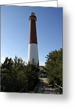 Walkway To Barnegat Light Greeting Card