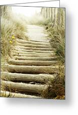 Walkway To Beach Greeting Card