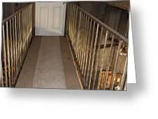 Walkway Upstairs Greeting Card