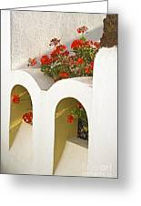 Wall With Red Flowers Greeting Card