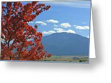 Dn5930-wallowa Valley In Fall Greeting Card