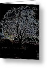 Walnut Tree Series Glowing Edges Greeting Card
