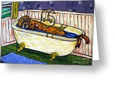 Walrus Bather Greeting Card by Jay  Schmetz