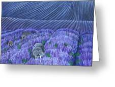 Walruses In A Field Of Lavender Greeting Card
