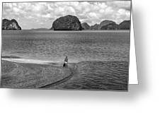 Wandering In Paradise Monochrome Greeting Card