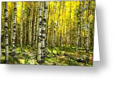 Wandering In The Woods  Greeting Card