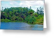 Waoleke Pond Forest Greeting Card