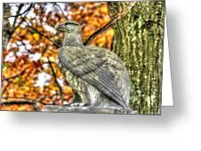 War Eagles - 28th Massachusetts Volunteer Infantry Rose Woods The Wheatfield Fall-a Gettysburg Greeting Card by Michael Mazaika