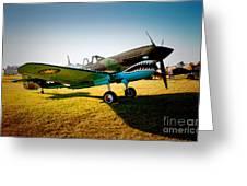 Warbird Curtiss P-40 E Greeting Card