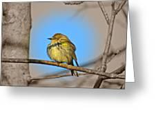 Warbler Greeting Card
