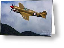 Warhawk Curtiss P-40  Greeting Card