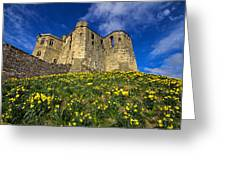 Warkworth Castle In Spring Greeting Card