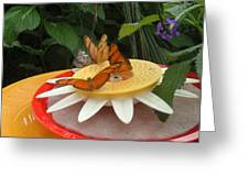 Warm Colorful Butterflies Greeting Card