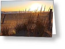 Warm Sea Grass Greeting Card
