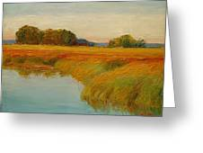 Warm Sunset On The Bog Greeting Card