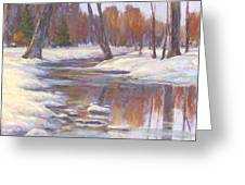 Warm Winter Reflections Greeting Card by Billie Colson