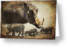 Warthog Profile Greeting Card