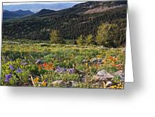 Wasatch Mountains Of Utah Greeting Card