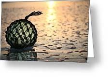 Washed Up Greeting Card by JC Findley