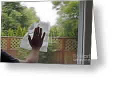 Washing A Window Greeting Card