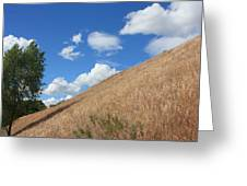 Washington Countryside Greeting Card