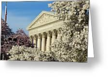 Washington Dc Cherry Blossom Supreme Court Greeting Card