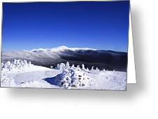 Washington In White Greeting Card