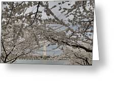 Washington Monument - Cherry Blossoms - Washington Dc - 011323 Greeting Card by DC Photographer