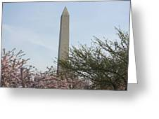 Washington Monument With Cherry Blossom Greeting Card