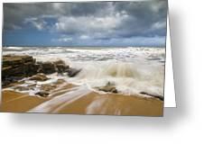Washington Oaks State Park Florida Beach - Coquina Crash Greeting Card by Dave Allen
