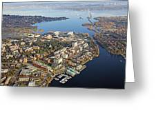 Washington University Greeting Card