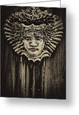 Watcher Of The Yard 2 Greeting Card by Shawn Lyte