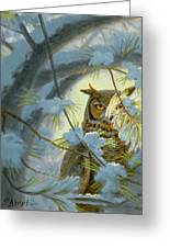 Watchful Eye-owl Greeting Card by Paul Krapf