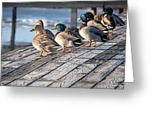 Watchin' The Tide Roll Away Greeting Card