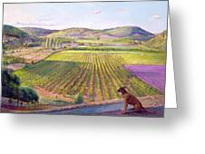 Watching From The Walls Old Provence Greeting Card