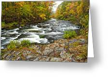 Watching It All Go By  At Beaver's Bend Broken Bow Fall  Foliage Oklahoma Greeting Card