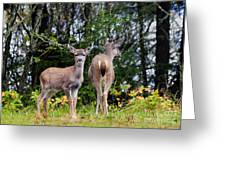 Watching Out For Mom Greeting Card