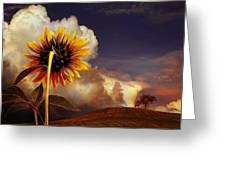 Watching The Sun Set Greeting Card
