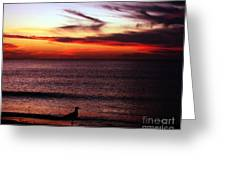 Watching The Sunset Greeting Card by Doris Wood