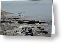 Water And Rocks Greeting Card
