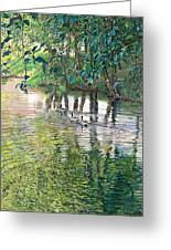 Water And Woodland Greeting Card by Nick Payne
