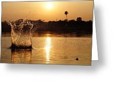Water Bomb Greeting Card