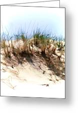 Water Color Sketch  Beach Dune Greeting Card