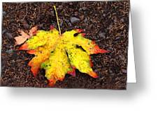 Water Colored Leaf - Autumn Greeting Card