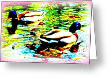 So Water Dance Is For Dancing Ducks  Greeting Card