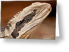 Water Dragon Close Up Greeting Card