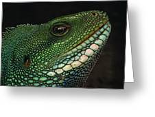 Water Dragon Face Vietnam Greeting Card